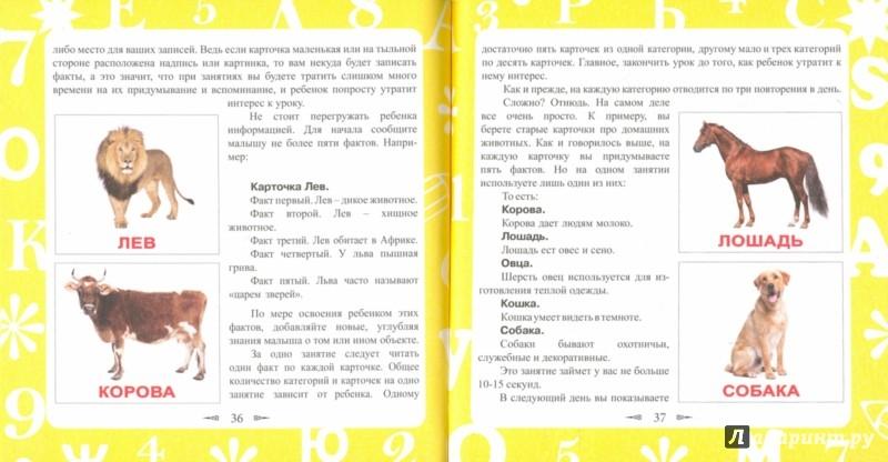 Иллюстрация 1 из 15 для Как вырастить вундеркинда - Елена Башкова | Лабиринт - книги. Источник: Лабиринт