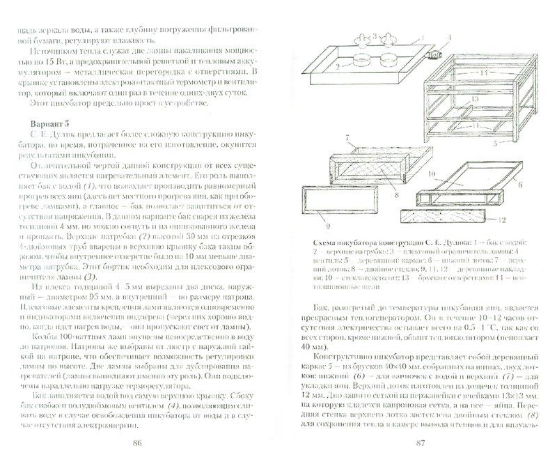 Иллюстрация 1 из 8 для Домашние инкубаторы - Александр Снегов | Лабиринт - книги. Источник: Лабиринт