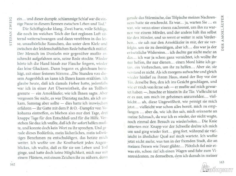 Иллюстрация 1 из 8 для Novellen - Stefan Zweig | Лабиринт - книги. Источник: Лабиринт