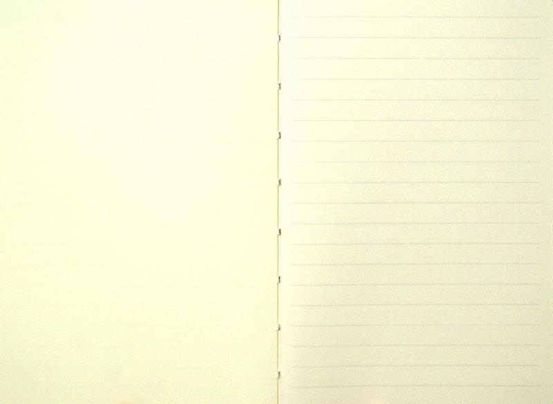 Иллюстрация 1 из 3 для Книга для заметок линованная на резинке, светло-зеленая. (60534) | Лабиринт - канцтовы. Источник: Лабиринт
