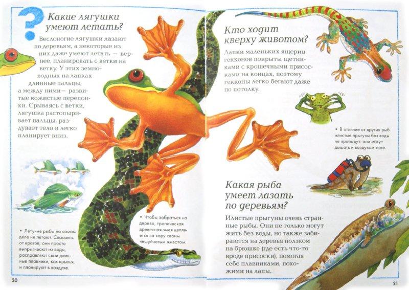 Иллюстрация 1 из 17 для Мир животных | Лабиринт - книги. Источник: Лабиринт