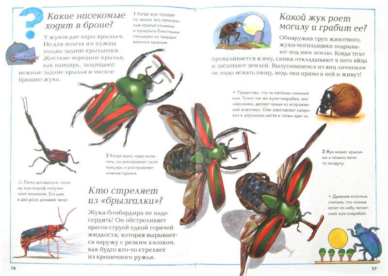 Иллюстрация 1 из 15 для Насекомые   Лабиринт - книги. Источник: Лабиринт