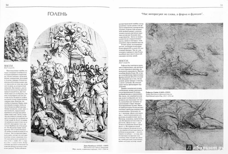 Иллюстрация 1 из 26 для Изображение человеческой фигуры: Мастер-класс - Роберт Хейл | Лабиринт - книги. Источник: Лабиринт