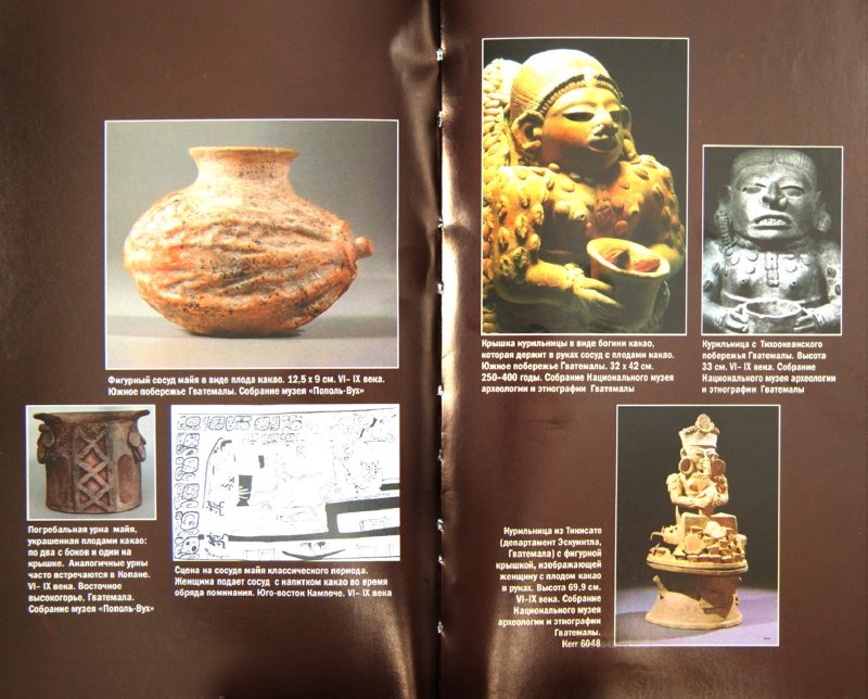 Иллюстрация 1 из 5 для Взбивая пену шоколада: Какао в Древней Америке - Ершова, Беляев | Лабиринт - книги. Источник: Лабиринт