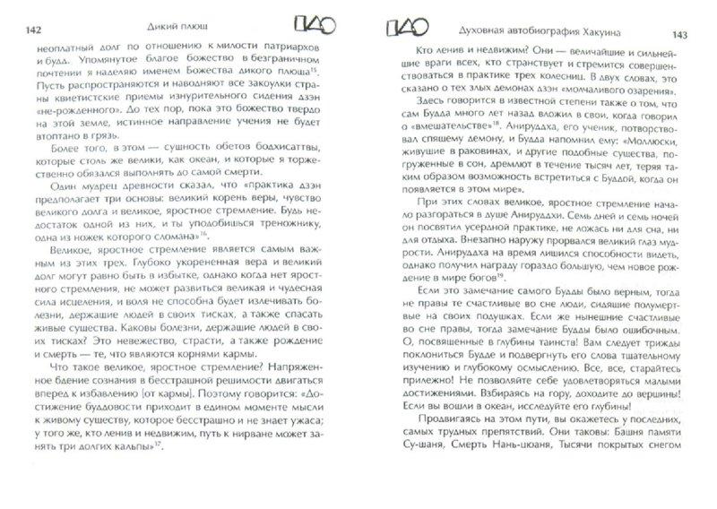 Иллюстрация 1 из 8 для Дикий плющ. Духовная автобиография дзэнского наставника Хакуина | Лабиринт - книги. Источник: Лабиринт