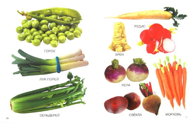 Иллюстрация 1 из 9 для Мои блестящие книжки. Овощи | Лабиринт - книги. Источник: Лабиринт