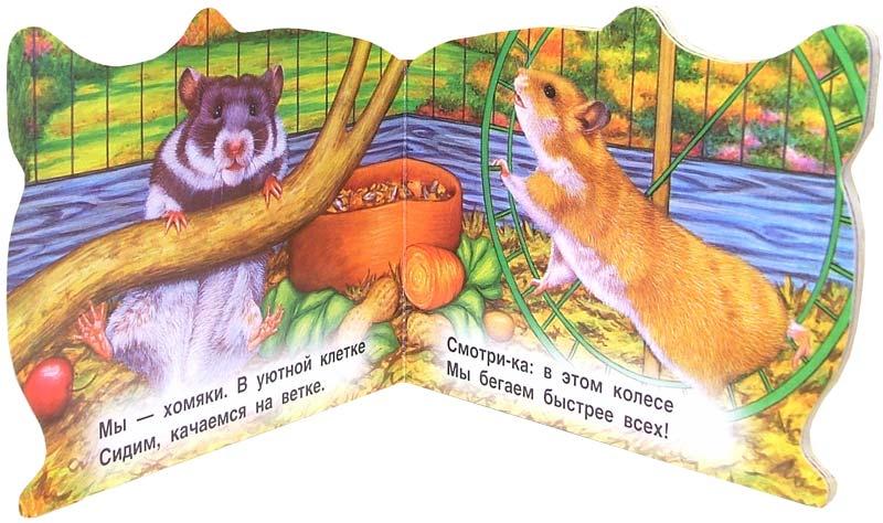 Иллюстрация 1 из 2 для Хомяк. Веселые зверята - Екатерина Карганова | Лабиринт - книги. Источник: Лабиринт