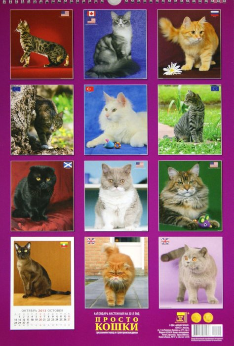 """Иллюстрация 1 из 2 для Календарь 2013 """"Просто кошки"""" (12310)   Лабиринт - сувениры. Источник: Лабиринт"""