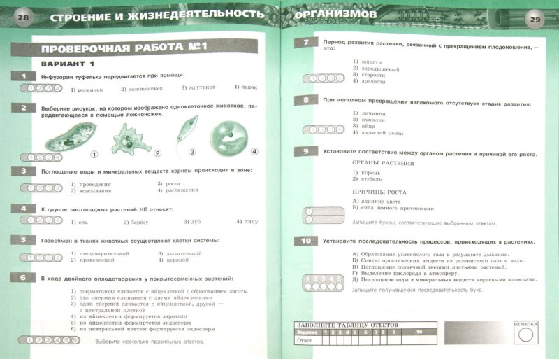 Тестовые задания по биологии 5 6 класс