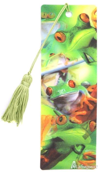 """Иллюстрация 1 из 4 для 3D Закладка """"Лягушки"""" (BkH009)   Лабиринт - канцтовы. Источник: Лабиринт"""