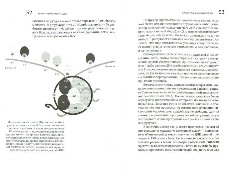 Иллюстрация 1 из 21 для Читая между строк ДНК. Второй код нашей жизни, или Книга, которую нужно прочитать всем - Петер Шпорк | Лабиринт - книги. Источник: Лабиринт