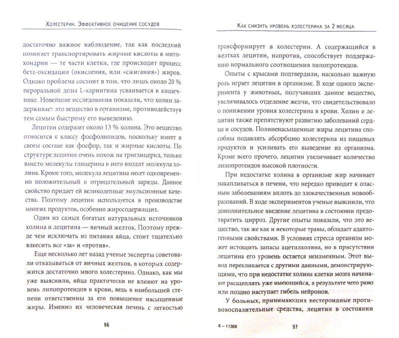 Иллюстрация 1 из 4 для Холестерин. Эффективное очищение сосудов - Елена Исаева | Лабиринт - книги. Источник: Лабиринт