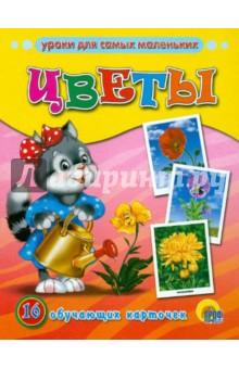Цветы. Обучающие карточки