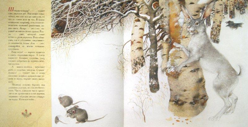 Иллюстрация 1 из 70 для Жизнь в тайге - Бренда Гиберсон | Лабиринт - книги. Источник: Лабиринт