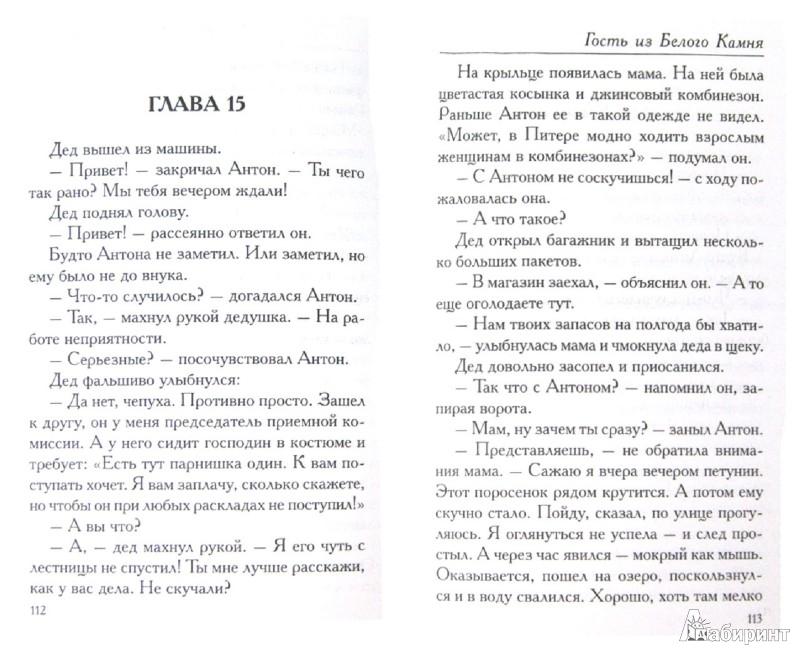 Иллюстрация 1 из 15 для Гость из Белого Камня - Екатерина Каретникова   Лабиринт - книги. Источник: Лабиринт