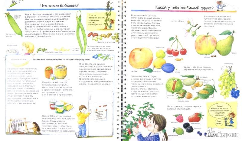 Иллюстрация 1 из 34 для Что я ем? - Дорис Рюбель | Лабиринт - книги. Источник: Лабиринт