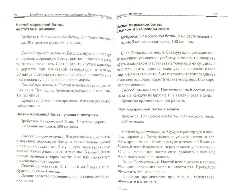 Иллюстрация 1 из 7 для Целебные семена, косточки, плодоножки. Лечение без лекарств   Лабиринт - книги. Источник: Лабиринт