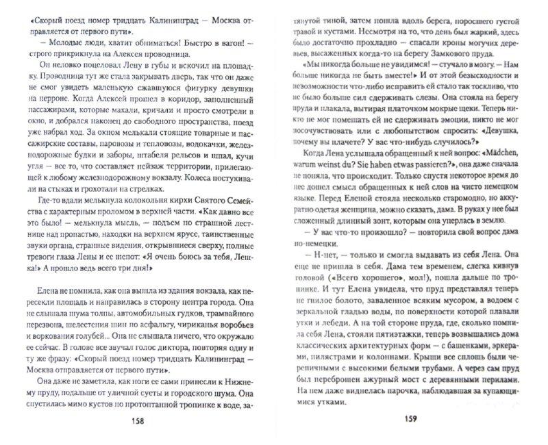 Иллюстрация 1 из 23 для Янтарная фибула - Андрей Пржездомский | Лабиринт - книги. Источник: Лабиринт