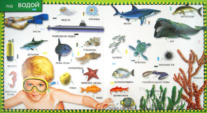 Иллюстрация 1 из 11 для Море. 100 окошек - Анна Казалис | Лабиринт - книги. Источник: Лабиринт