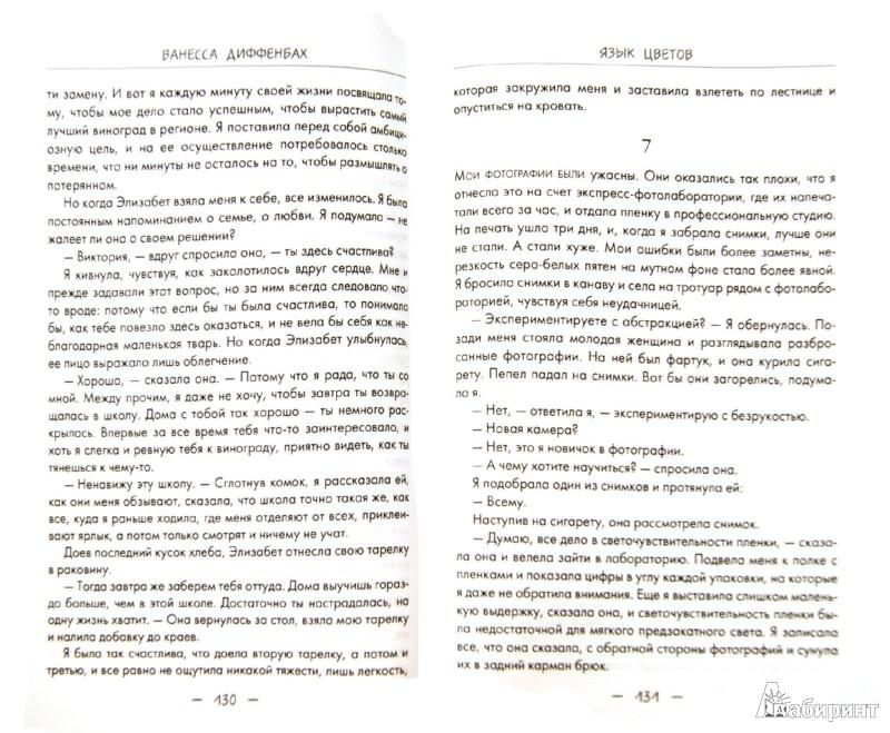 Иллюстрация 1 из 11 для Язык цветов. Гербера - радость - Ванесса Диффенбах | Лабиринт - книги. Источник: Лабиринт