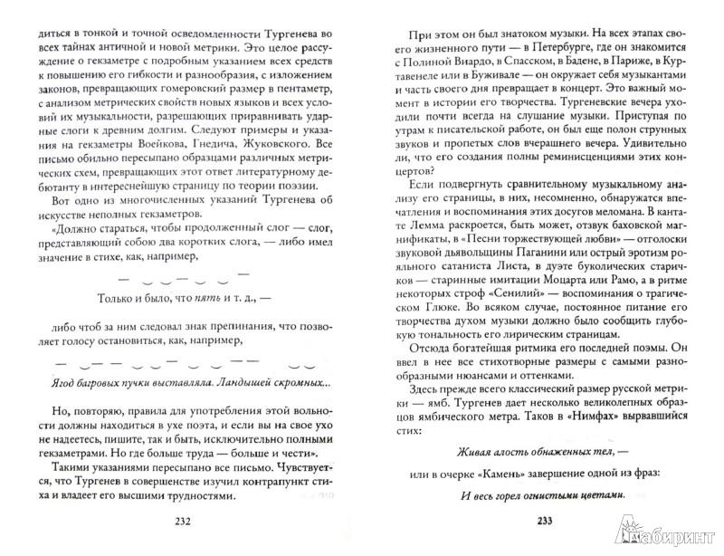 Иллюстрация 1 из 10 для Литературные портреты - Леонид Гроссман   Лабиринт - книги. Источник: Лабиринт