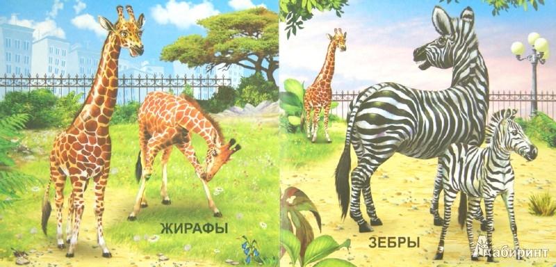 Иллюстрация 1 из 10 для Животные в зоопарке | Лабиринт - книги. Источник: Лабиринт
