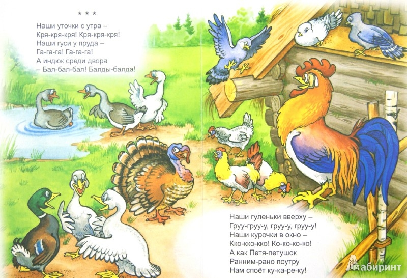 Иллюстрация 1 из 8 для Петя-петушок золотой гребешок   Лабиринт - книги. Источник: Лабиринт
