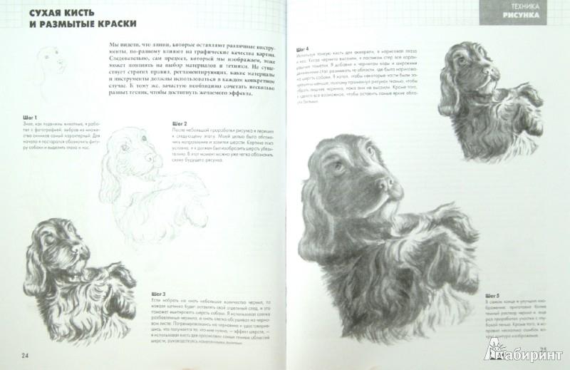 Иллюстрация 1 из 21 для Техники рисования - Питер Грей | Лабиринт - книги. Источник: Лабиринт