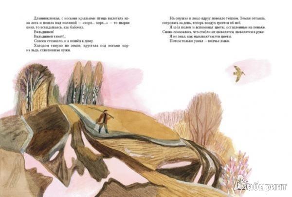 Иллюстрация 1 из 48 для Чистый Дор - Юрий Коваль | Лабиринт - книги. Источник: Лабиринт