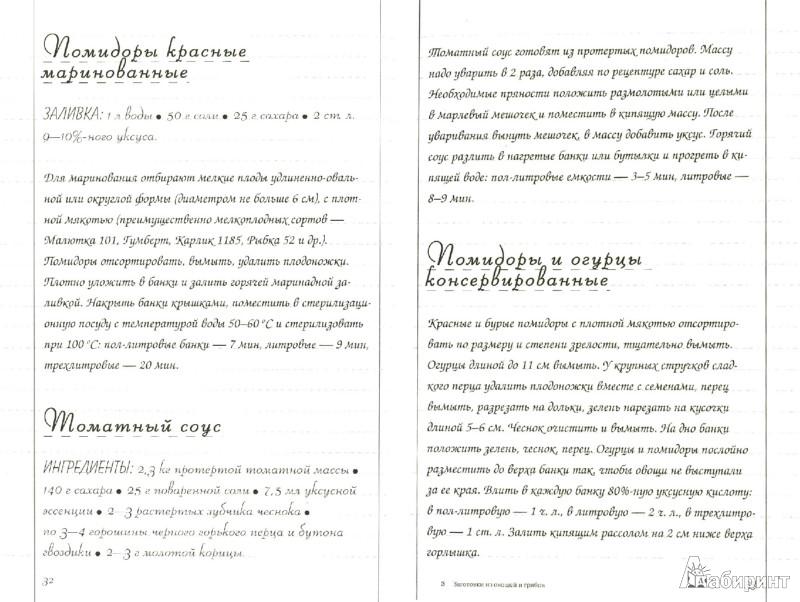 Иллюстрация 1 из 5 для Заготовки из овощей и грибов. Как выбрать, что приготовить и где записать | Лабиринт - книги. Источник: Лабиринт