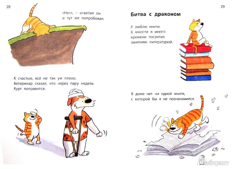 Иллюстрация 1 из 31 для Кот Камикадзе - Эдит Шрайбер-Вике | Лабиринт - книги. Источник: Лабиринт