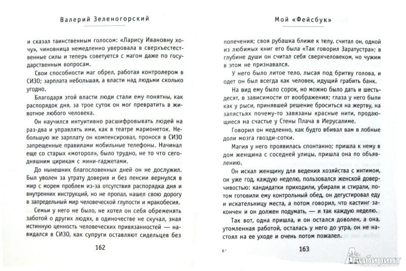 """Иллюстрация 1 из 9 для Мой """"Фейсбук"""" - Валерий Зеленогорский   Лабиринт - книги. Источник: Лабиринт"""