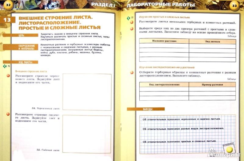 Тетрадь практикум по биологии 9 класс сухорукова