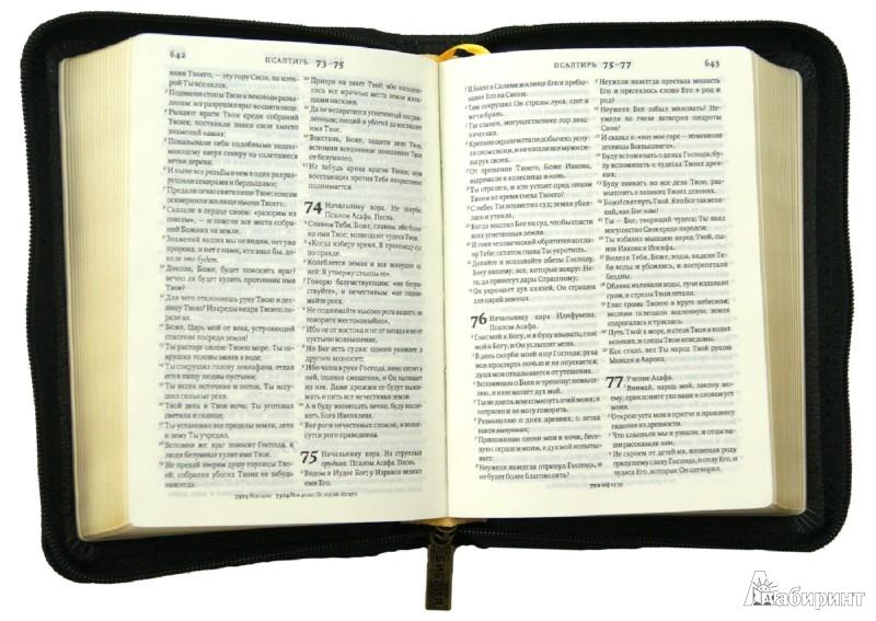 Иллюстрация 1 из 8 для Библия (без неканонических книг) | Лабиринт - книги. Источник: Лабиринт