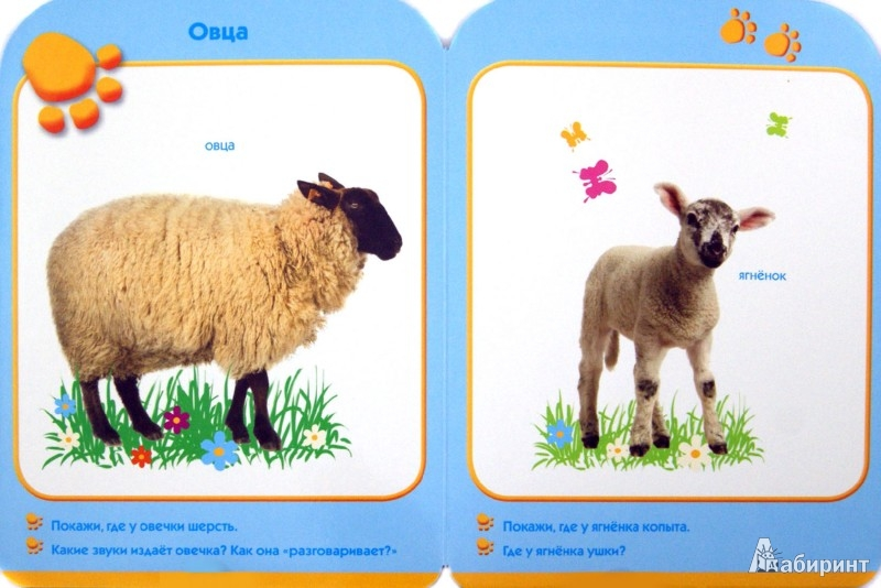 Иллюстрация 1 из 4 для Зверята. Развиваем малыша (0-1 год)   Лабиринт - книги. Источник: Лабиринт
