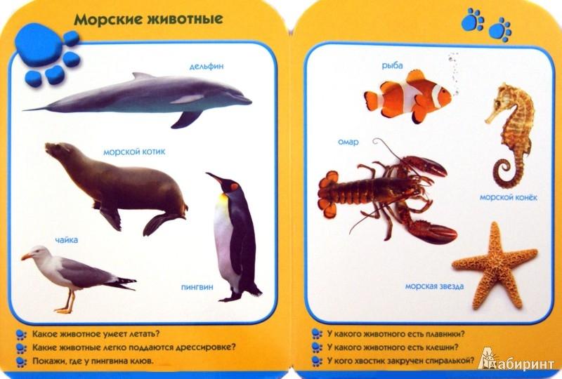 Иллюстрация 1 из 23 для Мой зоопарк. Развиваем малыша (2-3 года) | Лабиринт - книги. Источник: Лабиринт