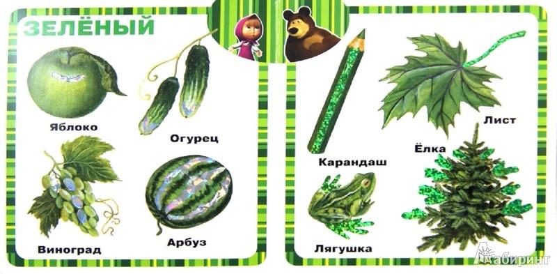 Иллюстрация 1 из 6 для Маша учит цвета. Маша и Медведь. Блестящая книжка | Лабиринт - книги. Источник: Лабиринт