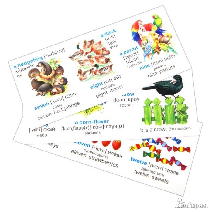 Иллюстрация 1 из 6 для Английский на карточках. Набор карточек   Лабиринт - книги. Источник: Лабиринт