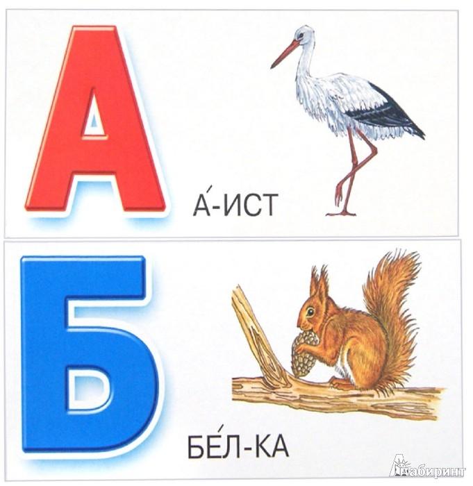 Иллюстрация 1 из 3 для Азбука. Набор карточек   Лабиринт - книги. Источник: Лабиринт