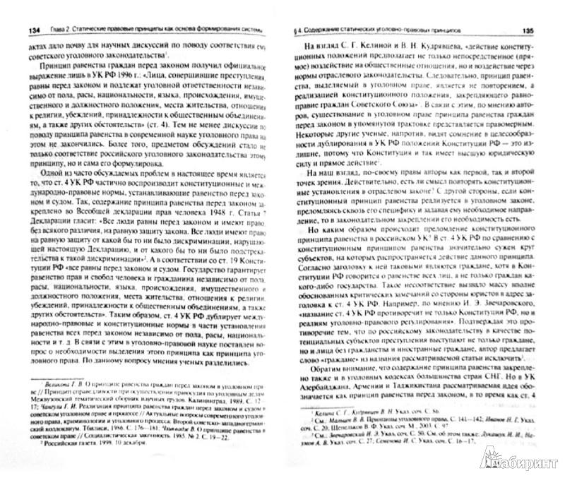 Иллюстрация 1 из 10 для Система уголовно-правовых принципов. Монография - Тимур Сабитов | Лабиринт - книги. Источник: Лабиринт