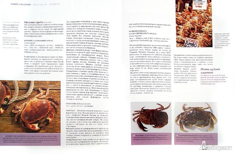 Иллюстрация 1 из 12 для Рыба и морепродукты. Большая кулинарная книга | Лабиринт - книги. Источник: Лабиринт