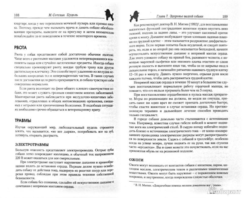 Иллюстрация 1 из 10 для Пудель. Стандарт. Содержание и уход. Воспитание. Профилактика заболеваний. Выставки. Разведение - Мария Сотская | Лабиринт - книги. Источник: Лабиринт
