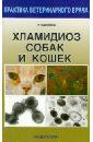 Равилов Рустам Хаметович Хламидиоз собак и кошек