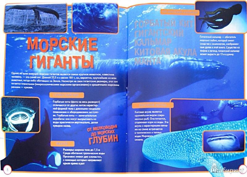 Иллюстрация 1 из 8 для Подводный мир 3D - Джон Старк | Лабиринт - книги. Источник: Лабиринт