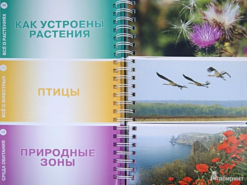 Иллюстрация 1 из 9 для Растения и животные: вопросы и ответы | Лабиринт - книги. Источник: Лабиринт