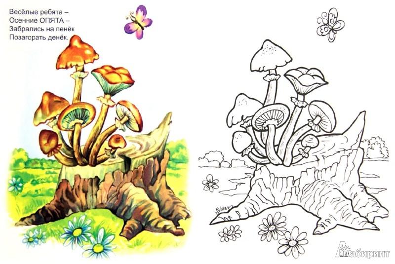 Иллюстрация 1 из 12 для Грибы и ягоды - Юрий Чичев | Лабиринт - книги. Источник: Лабиринт