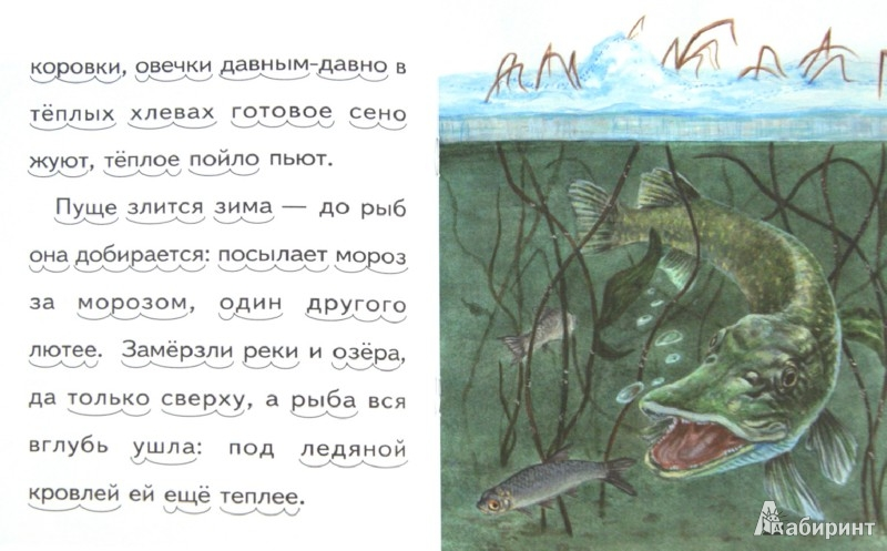 Иллюстрация 1 из 22 для Проказы старухи-зимы - Константин Ушинский | Лабиринт - книги. Источник: Лабиринт