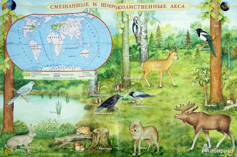 Иллюстрация 1 из 7 для Естествознание. Введение в естественно-научные предметы. 5 класс. Атлас. ФГОС | Лабиринт - книги. Источник: Лабиринт