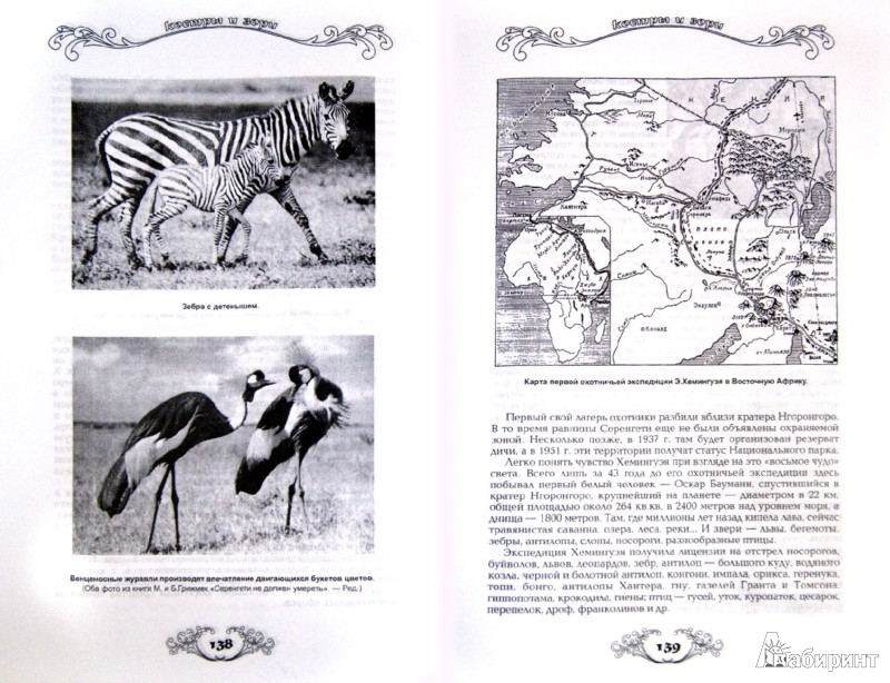 Иллюстрация 1 из 4 для Охотничьи просторы. Книга вторая (36), 2003 год | Лабиринт - книги. Источник: Лабиринт