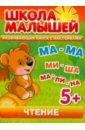 Чтение. Развивающая книга с наклейками для детей с 5-ти лет